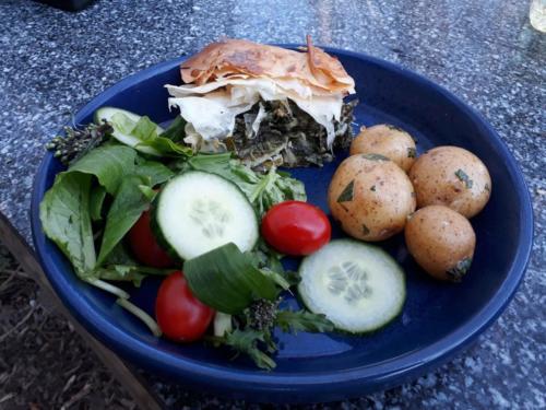 hortocopita for lunch