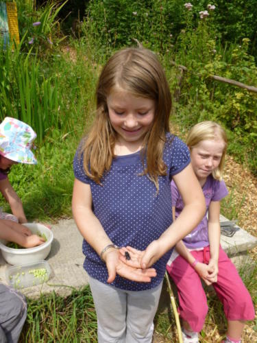 evie holding beetle 2009